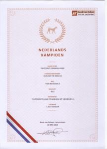 Nederlands_Kampioen