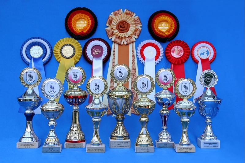 2012_Pokale und_Schleifen