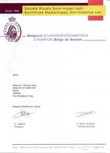 Champion_Belgien
