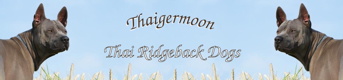 Thaigermoon –  Rasseinfos und Züchter von Thai Ridgeback Dogs